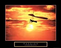 "Passion - Hang Glider - 28"" x 22"""