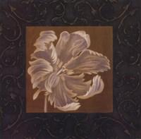 Tan Flower Fine Art Print