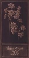 Fleurs-Pierre Lyon Fine Art Print