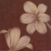 Tan Flowers I Fine Art Print