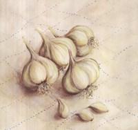 Garlic - square Fine Art Print