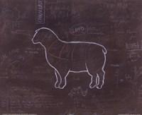 Lamb Fine Art Print