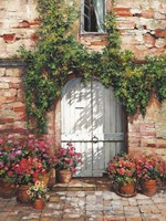 Wooden Doorway, Siena Fine Art Print