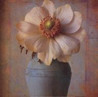 Floral Study II Fine Art Print