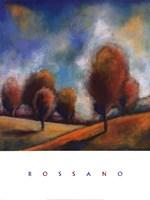 Tuscan Shadows III Framed Print