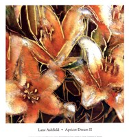 Apricot Dreams II Fine Art Print