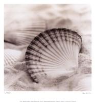 La Mer 3 Fine Art Print