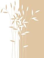 Reeds II Fine Art Print