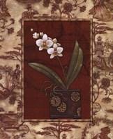 "Osaca Floral II by Charlene Audrey - 16"" x 20"", FulcrumGallery.com brand"