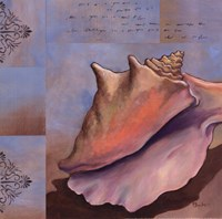 "Sanibel Conch by Paul Brent - 12"" x 12"""