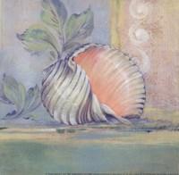 Tranquil Seashells II - Mini Framed Print