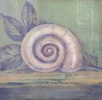 Tranquil Seashells III - Mini Framed Print