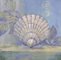 """Tranquil Seashell IV by Pamela Gladding - 12"""" x 12"""""""