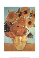Sunflower on Blue, c.1888 Fine Art Print