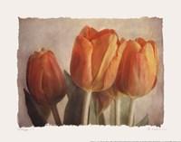 """Bellezza I - Mini by Amy Melious - 10"""" x 8"""""""