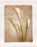 """Poetica II - Mini by Amy Melious - 8"""" x 10"""""""