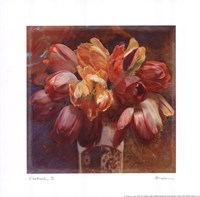 "10"" x 10"" Tulips Pictures"