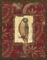 Exotica Parrot Fine Art Print