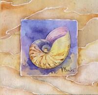 "Nautilus - Mini by Paul Brent - 8"" x 8"""