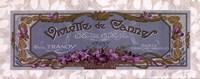 Violette De Cannes - Grande Framed Print
