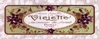 Violette - Grande Fine Art Print