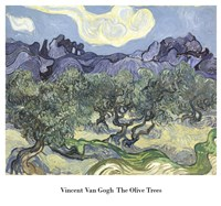 The Olive Trees, c.1889 (blue & green) Fine Art Print