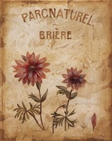 Parcnaturel I - Mini Fine Art Print