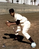Ernie Banks - Fielding, posed Fine Art Print