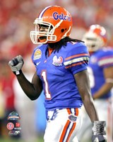 "Reggie Nelson - 2007  Florida Gators  Action - 8"" x 10"""