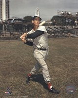 Ted Williams - Posed Batting Fine Art Print
