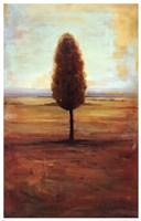 Solitaire II Fine Art Print