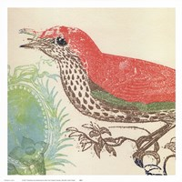 Red Bird Fine Art Print