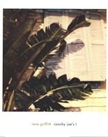 "Conchy Joe's I by Rene Griffith - 19"" x 24"""
