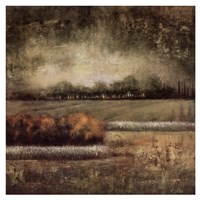 Field at Dawn I Fine Art Print