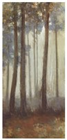 Silver Trees I Fine Art Print