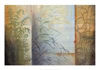 "Ferns & Grasses by Don Li-Leger - 39"" x 28"""