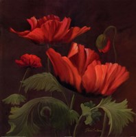 Vibrant Red Poppies II Fine Art Print