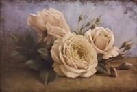 "The Beauty of Sasha by Igor Levashov - 36"" x 24"" - $25.99"