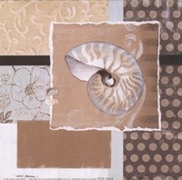 "Shell Collage I by Carol Robinson - 6"" x 6"""