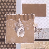 "Shell Collage II by Carol Robinson - 6"" x 6"""