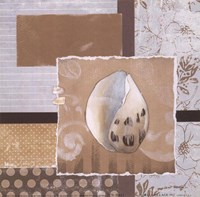 Shell Collage IV Fine Art Print