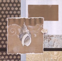 "Shell Collage II by Carol Robinson - 12"" x 12"""