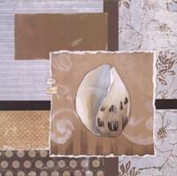"""Shell Collage IV by Carol Robinson - 12"""" x 12"""""""