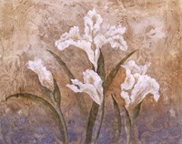Fleurs Meditatives I Fine Art Print