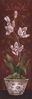 "Organic Orchids I by Eugene Tava - 12"" x 36"""