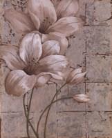 Lilies on Silver I Fine Art Print