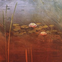 """Pond Lilies II by Amy Melious - 16"""" x 16"""""""