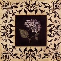 """Hydrangea by Jo Moulton - 12"""" x 12"""""""