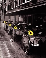 "Sunflower Cafe by Steven Mitchell - 16"" x 20"""