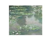 Water Lilies (I), 1905 Fine Art Print